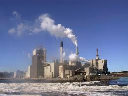 environmental impact of paper