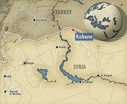 Risultati immagini per kobane map