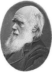 Charles Darwin - Wikiquote