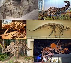 <b>Dinosaur</b> - Wikipedia
