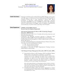 accounting resume overview resume examples of summaries format how job summaries sample resume summary for it professionals resume how to write professional experience summary in