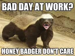 BAD DAY AT WORK? HONEY BADGER DON'T CARE - Honey badger hatin ... via Relatably.com