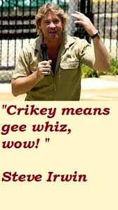 Steve Irwin on Pinterest | Crocodiles, Bindi Irwin and Hunters