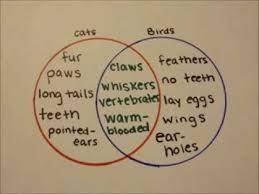 how to make a venn diagram   youtubehow to make a venn diagram