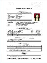german cv example english sample customer service resume german cv example english cv templates vesterling hr consulting example of english cv afib resume english