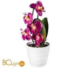 <b>Настольная лампа Globo 28022P</b> купить в Москве в BCLight.ru