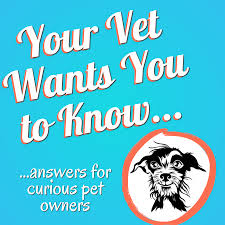 Your Vet Wants You to Know