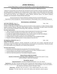 digital marketing resume   fotolip com rich image and  digital marketing resume