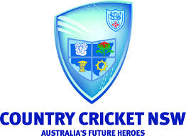 Image result for country cricket