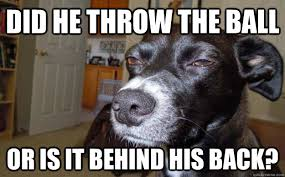 did he throw the ball or is it behind his back? - Skeptical Mutt ... via Relatably.com