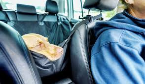 10 Best Dog <b>Car Seat Cover</b> for <b>Leather Seats</b> 2020 – Latest Reviews