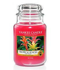 <b>Ароматическая свеча</b> Тропические джунгли, Yankee Candle ...