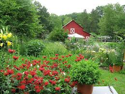 organic farming green design innovation you could win this beautiful organic farm your best 200 word essay