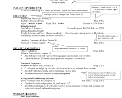 examples chronological resume great resume examples anuvratfo examples chronological resume isabellelancrayus outstanding how can make resume isabellelancrayus likable images about the best resume
