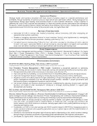pmo resume examples pmo resume samples all document resume isabelle lancray