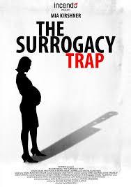 Regarder Maternité à risque