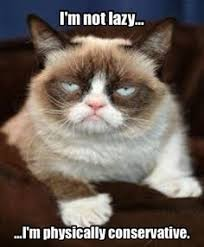 Grumpy Cat - Bedtime on Pinterest | Grumpy Cat, Grumpy Cat Meme ... via Relatably.com