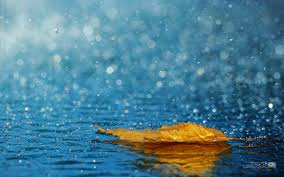 Image result for عکس شیشه باران خورده