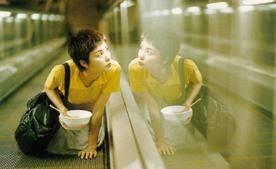 Ways of seeing wild in the cinema of Wong Kar-Wai