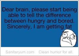 Im Fat Quotes Tumblr - 365 funny pics