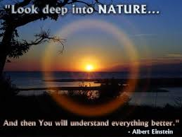 Nature Quotes - Look deep into Nature... and then you will ...