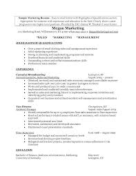 example resume summary project status report template mental resume help hobbies and interests