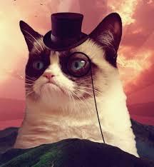 Cat In The Hat Meme Generator | BobCat via Relatably.com