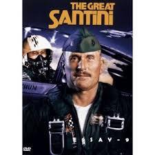 film studies essay topicsthe great santini