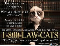 We'll The Money U Need Right Meow by ducani - Meme Center via Relatably.com
