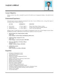 what is in a good resume sample good resume objective examples in pdf word aploon examples of good resumes for a resume