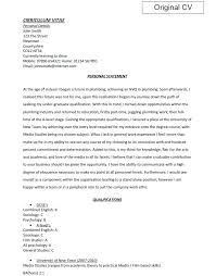 resume   writing a cv profile statement how to make yearly         terrific example of personal profile on resume