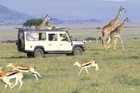 Image result for Tourist site in Kenya