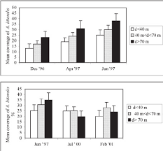 Survival rate of individuals of Ammophila littoralis transplanted in ...