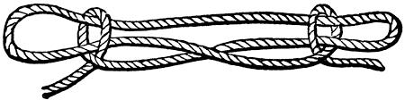 Image result for sheep shank