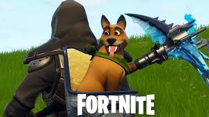Fortnite Team Spirit Challenge - How to pet a teammate's pet ...