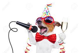 Image result for pics of celebrating