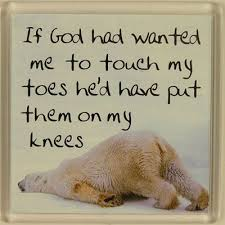 Image result for If God wanted me to touch my toes, he would have put them on my knees.