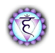 Image result for vishuddhi