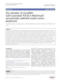 (PDF) The activation of microRNA-<b>520h</b>–associated TGF-β1/c-Myb ...