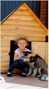 Free Do It Yourself Dog House Plans and Building Guides