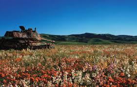 「戦車 花畑」の画像検索結果