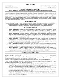 resume format for business development manager resume objective director of business planning resume