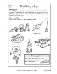 1st grade, 2nd grade, Kindergarten Science Worksheets: Non-living ...Skills