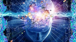 Resultado de imagen de cerebro humano
