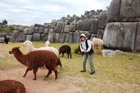 Legit <b>Baby</b> Alpaca Items - Review of La Vicunita <b>Factory</b>, Cusco ...