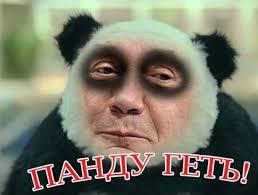 У Януковича полная потеря реальности вкупе с тотальной претензией на власть, - евродепутат - Цензор.НЕТ 2343