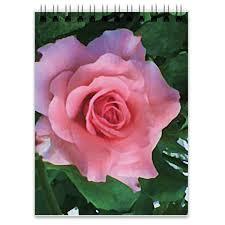 "<b>Блокнот</b> ""<b>Розовая роза</b>"" #2679128 от Лана - <b>Printio</b> | Flowers ..."
