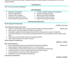 breakupus unusual project manager resume sample project manager breakupus extraordinary unforgettable direct support professional resume examples to stand extraordinary direct support professional resume