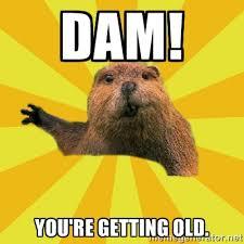 Dam! You're getting old. - grumpy beaver | Meme Generator via Relatably.com