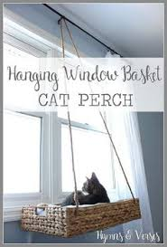 wall mounted cat furniture pet design diy hanging basket cat perch amazoncom furniture 62quot industrial wood